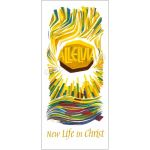 New life in Christ (2) - Banner BAN08T