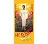 He is risen - Lectern Frontal LF23A