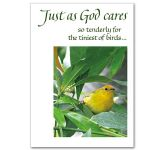 God Cares For Us (CB1597)