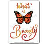 What is Beauty: What is beauty? - Display Board 664